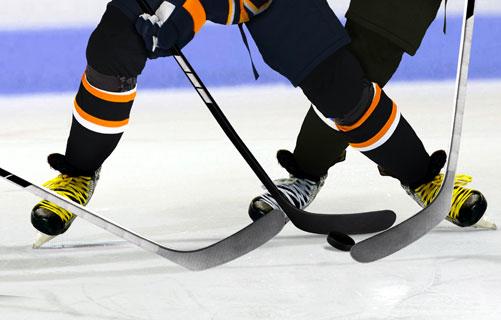 Rental - Practice Rink (NHL)